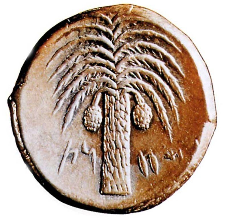 monnaie_carthage-1dc1702.jpg