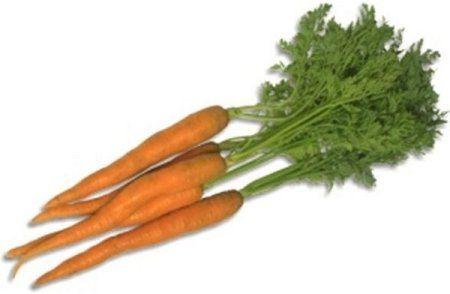 carotte histoire