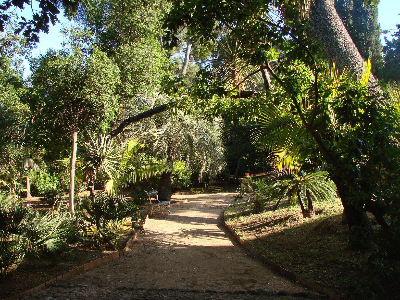 Parcs et jardins parc du plantier de costebelle for Parc et jardin