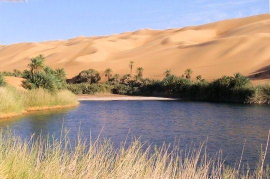 oasis1-.jpg