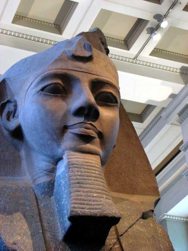 pharaon-1837fa4.jpg