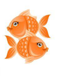 poisson-1d2eaa9.jpg