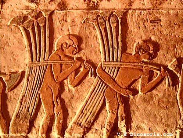 scene-mastaba-19dee37.jpg